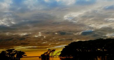 Áreas Naturales Protegidas de Tecoluca