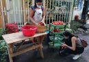 Mercado Santa Cruz Porrillo, una estrategia para dinamizar la economía comunal